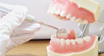予防歯科|神戸市東灘区住吉の米田歯科